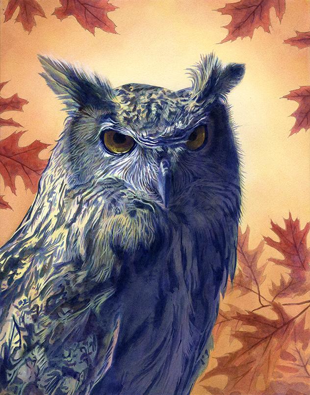 Owl by Alanpaints