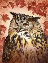 Owl Acrylics 2