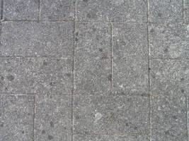 Texture: Grey Flagstone by ivelt-resources