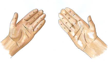 DA Tutorial Hand