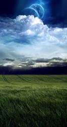 Field of Wonders by meishe91