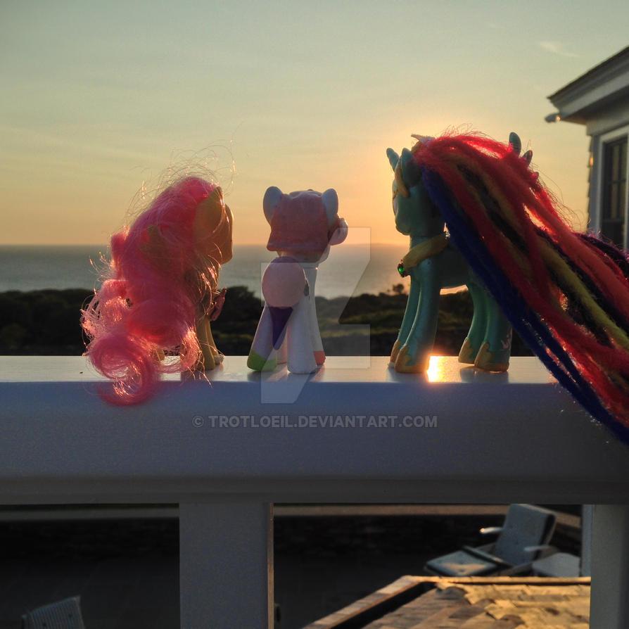 Vineyard Ponies at Sunset 2 by TexacoPokerKitty