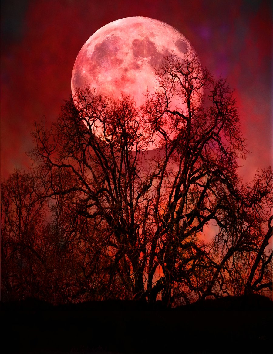 fantasy Art, Red Moon, Moon, Clouds, Minimalism ... |Red Moon Artwork