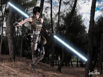 Fighting for Alderaan by Nebulaluben