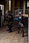 Garrus and Tali cosplay