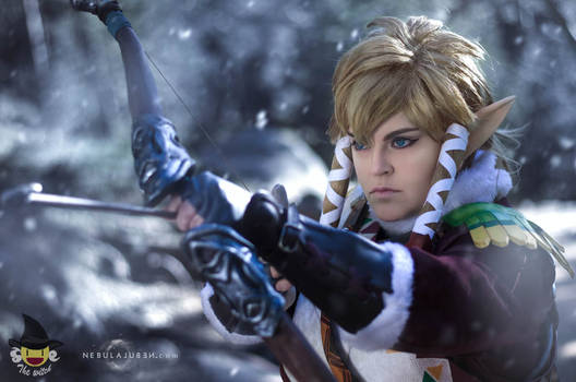 Link Snowquill cosplay
