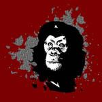 Che Monkeyvara