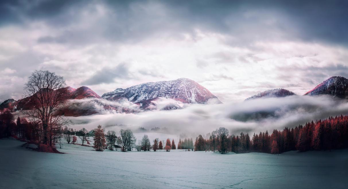 morning fog by elopan