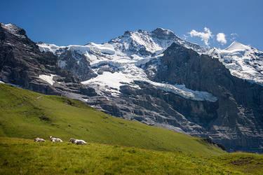 Alpine by jfb