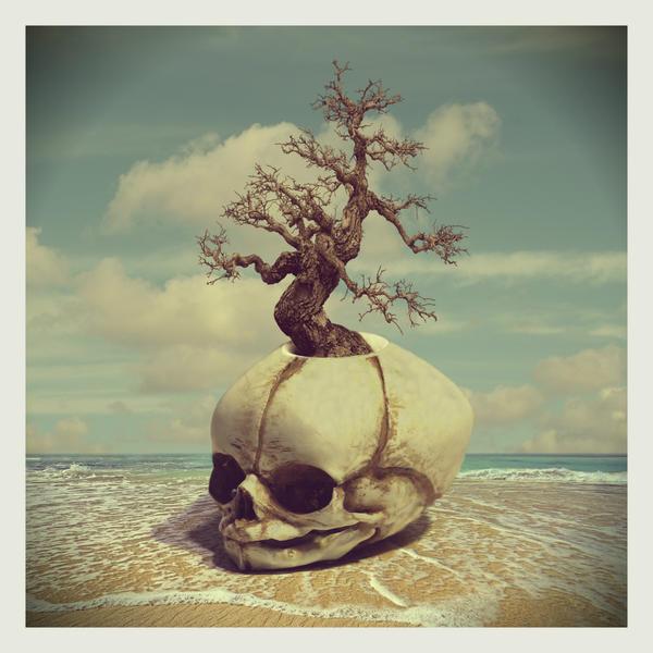 skull nest by beyzayildirim77