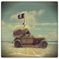 pirate seagull by beyzayildirim77