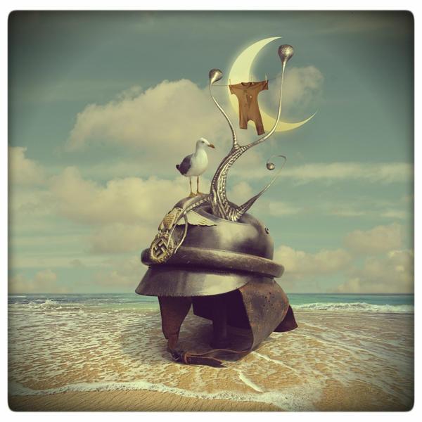 Helmet nest by beyzayildirim77