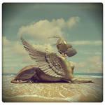 Last Sphinx