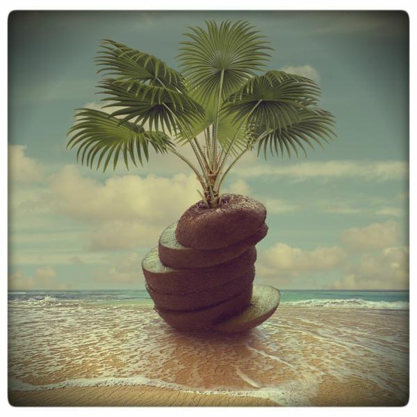 Kiwi tree by beyzayildirim77
