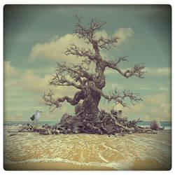 Blackbeard's tree by beyzayildirim77