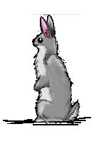 Bunny Anyone? by PlumiiraCreature
