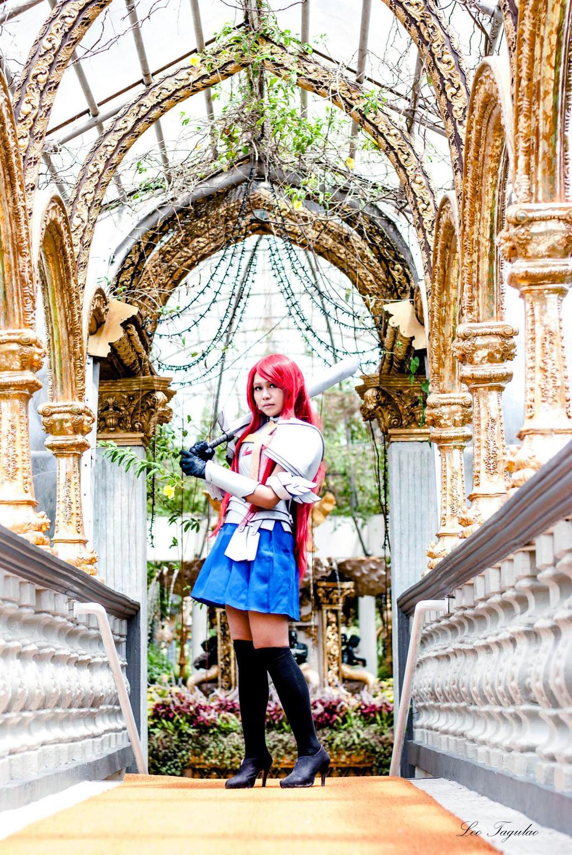 Erza Scarlet IV by InEriShiNeSaMaru