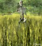 Muerto en el campo [Dead in the field]
