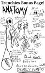 Trenchy Anatomy Part 1