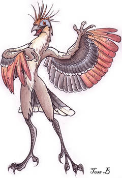my hoatzin anthro