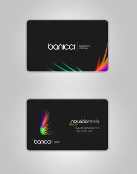 banicci Logo and Business Card