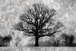 IR Tree Texture Edit by richsabre