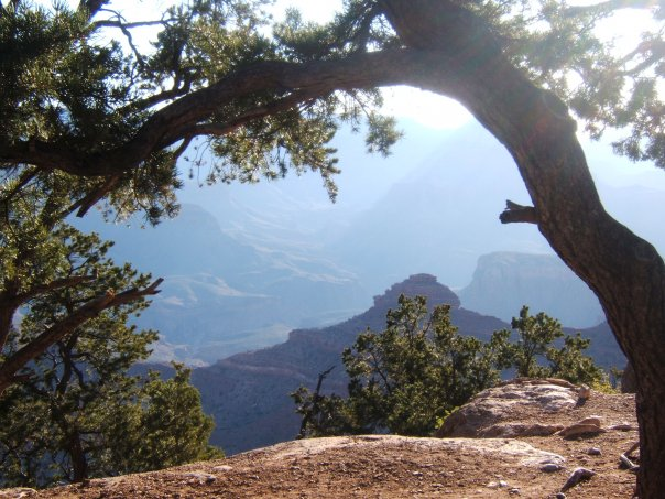 Grand Canyon Framed by EDFhector