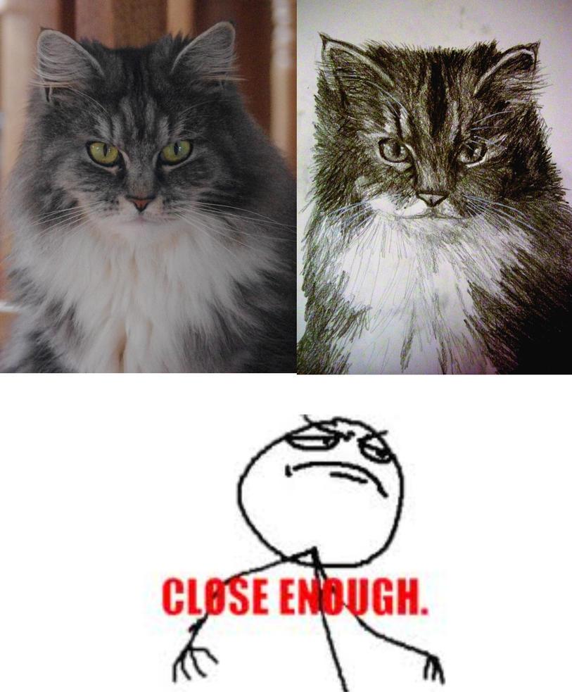 Rubber Cat S Den