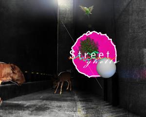 Street by Bull