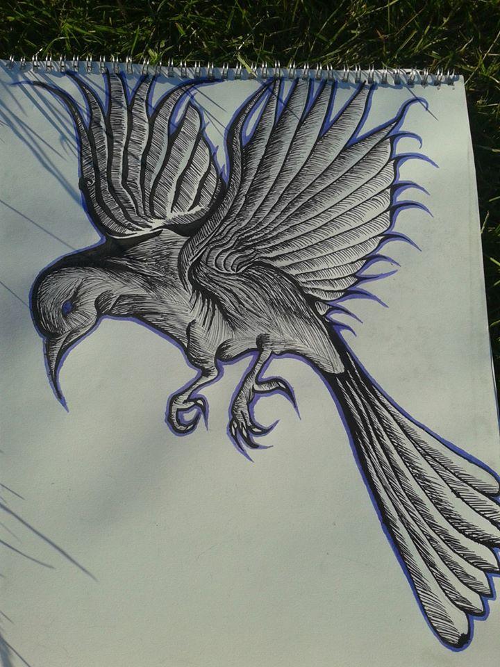 Quick Bird Drawing By AdamDee27 On DeviantArt