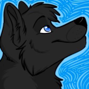 csBlackWolf06's Profile Picture