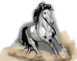 Horse by LisaGunnIllustration