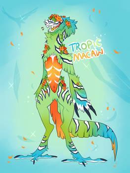 |Tropic Macaw| Open