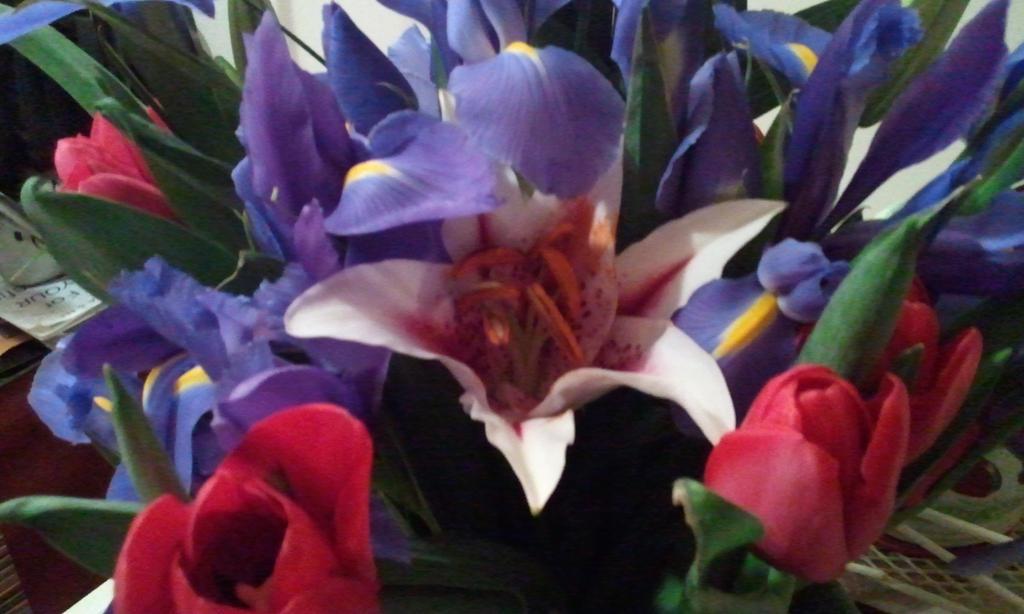 flowers devine wallpaper - photo #20