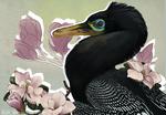 Buitreraptor with Magnolias