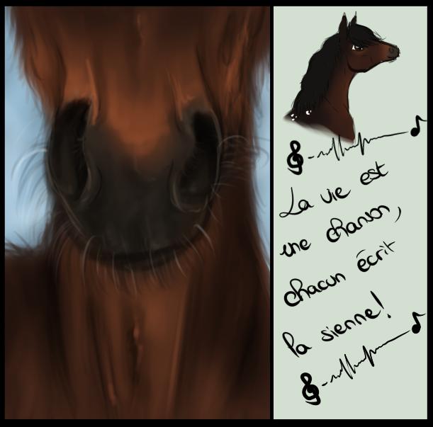 .: La vie est une chanson .. :. by ChampieB