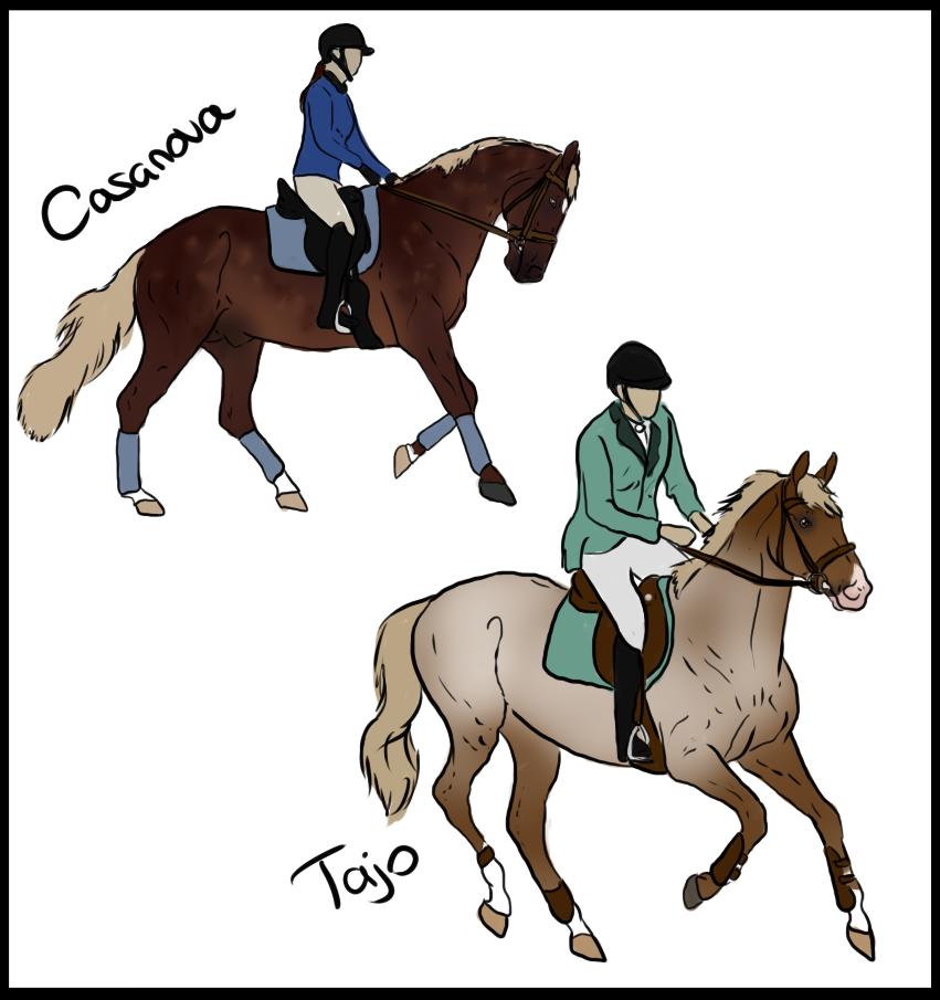 .: Casanova - Tajo :. by ChampieB