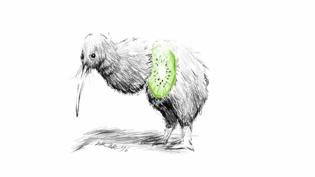 Classic Anatomy of a Kiwi Bird by Dalto11 on DeviantArt