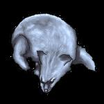Silver Fox Pelt by Ulfrheim