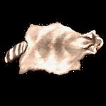 Albino Raccoon Pelt by Ulfrheim