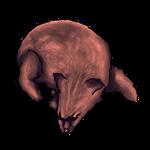 Red Fox Pelt by Ulfrheim