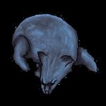 Blue Fox Pelt by Ulfrheim