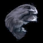 Possum Pelt by Ulfrheim