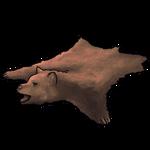 Cinnamon Bear Pelt by Ulfrheim