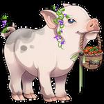 Mini Pig by Ulfrheim