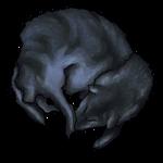 Black Coyote Pelt by Ulfrheim