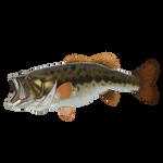 Largemouth Bass by Ulfrheim