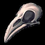 Crow Skull by Ulfrheim