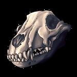 Fossil - Titan Skull by Ulfrheim