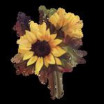 Sunflower by Ulfrheim